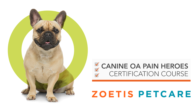Canine OA Pain Heroes Certification Course ZOETIS PETCARE